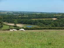 A 42.7 Acre Farm In A Peaceful Rural Setting